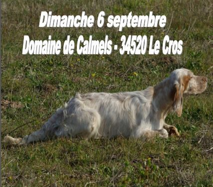 TAN DIMANCHE 6 SEPTEMBRE 2020 DOMAINE DE CALMELS (34)