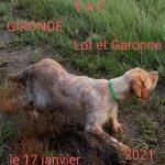 INFO : TAC GIRONDE DIMANCHE 17 JANVIER 2021(sous réserve d'autorisations)