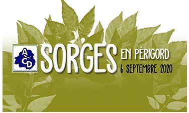 SPÉCIALE DE RACE SORGEs EN PÉRIGORD dIMANCHE 6 SEPTEMBRE